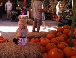 Girl at the Fall festival in Sarasota