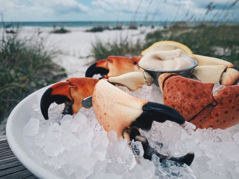 Image of crab claws in ice by the beach from The Sandbar