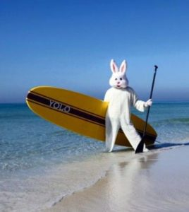 surfer dressed up in bunny costume